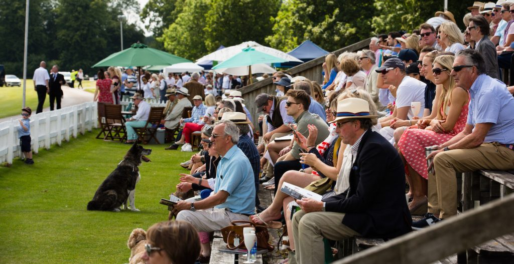 cirencesterpoloclub crowd