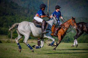 OKL South Africa Polo 1
